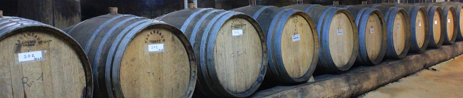 Row of wine barrels at Tyrells Wines on our Hunter Valley private wine tours