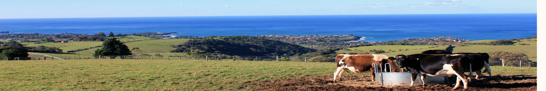 Farmland by the sea on the South Coast NSW